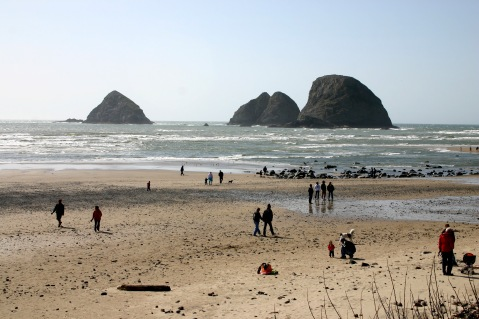 The Oregon Coast!